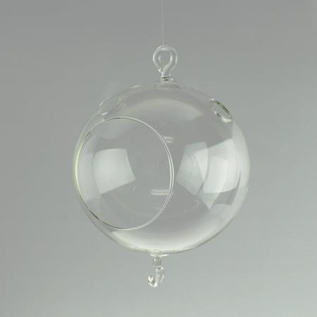 Round Glass Terrarium Air Plant Home Decor  5 Inch W  Hook