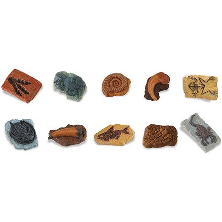 Safari Ltd Ancient Fossils TOOB with 10 Toy Figurines Including Dino Footprint, Giant Crab, Ammonite, Raptor Claw, Fossilized Frog, Trilobite, T-Rex Tooth, Fossilized Fish, Dino Skin, and Sea Scorpion