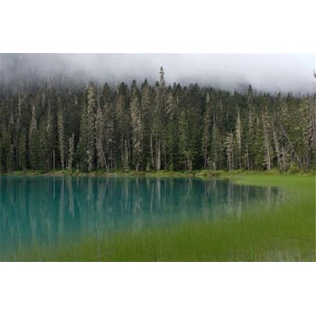 Posterazzi PDDCN02RKL0021 Blue Glacial Lake Evergreen Forest British Columbia Poster Print by Raymond Klass - 28 x 19 in. - image 1 de 1