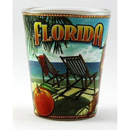 Florida State Mural Shot Glass