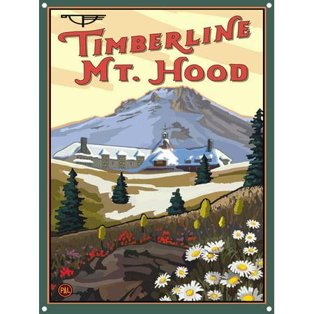 Timberline Lodge Mt Hood Oregon Spring Metal Art Print by Paul A. Lanquist (9
