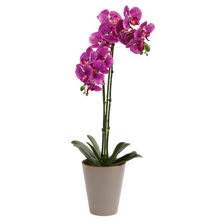 Nearly Natural 24 in. Speckled Phalaenopsis Orchid Artificial - Courtyard Orchid
