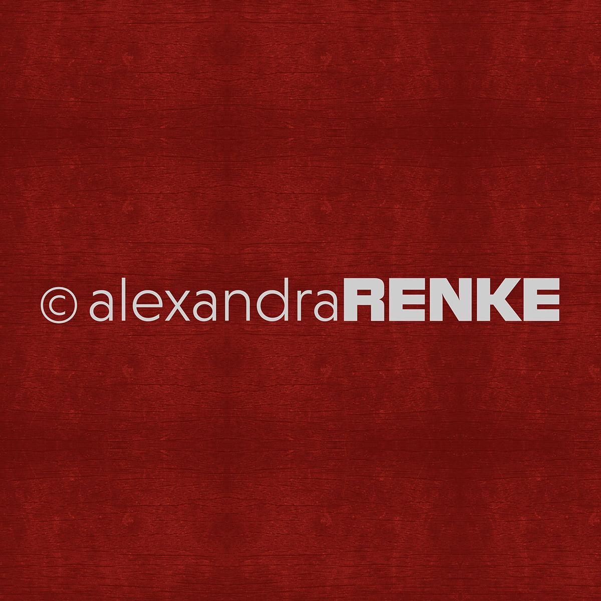 "Alexandra Renke Wooden Structure Basic Design Paper 12""X12""-Dark Red"