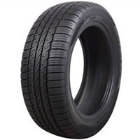 SuperMax TM-1 205/55R16 91 T Tire.