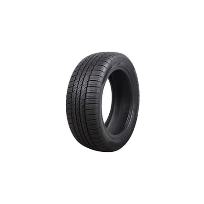 SuperMax TM-1 205/50R17 89 V Tire