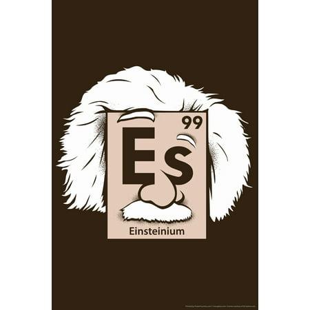 Einsteinium Periodic Table Albert Einstein Science Humor Poster   12X18 Inch