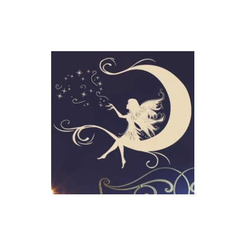 Style and Apply Moon Fairy Wall Decal