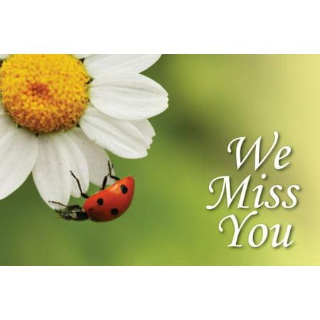 Lady Postcard (We Miss You Ladybug Postcard (Pkg of)