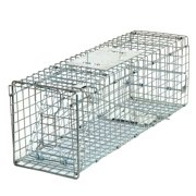 """Best Squirrel Traps - ZENSTYLE 24"""" Animal Trap Humane Steel Cage Review"""