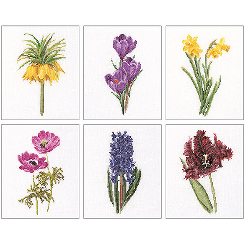 Thea Gouverneur Counted Cross-Stitch Kits, Floral Studies 3, Set of 6