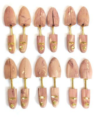 Cedar Elements Little Wholesale Program Cedar Shoe Trees 6 Pairs (M) by
