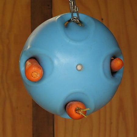 Shires Carrot Ball Horse Toy - Horse Balls