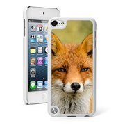 For Apple iPod Touch 5th / 6th Generation Hard Back Case Cover Close Up Fox (White)