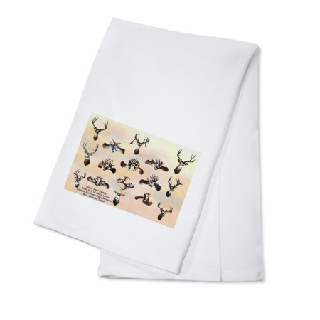 San Antonio, TX - View of Texas Deer Heads, Eight Death-Locks; Buckhorn Curio Museum (100% Cotton Kitchen Towel) (Halloween Store San Antonio Tx)