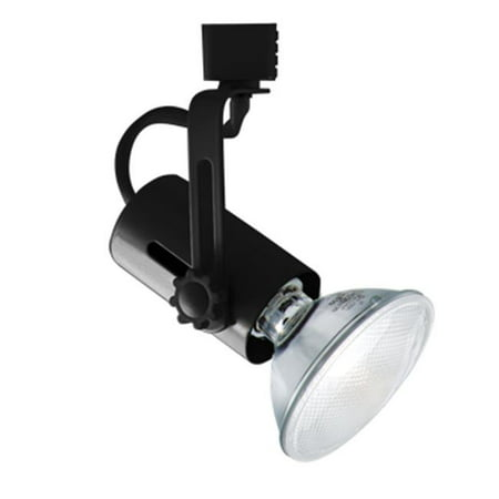 Wht Line Voltage Track Lighting - Classic Series Line Voltage Track Light, Black