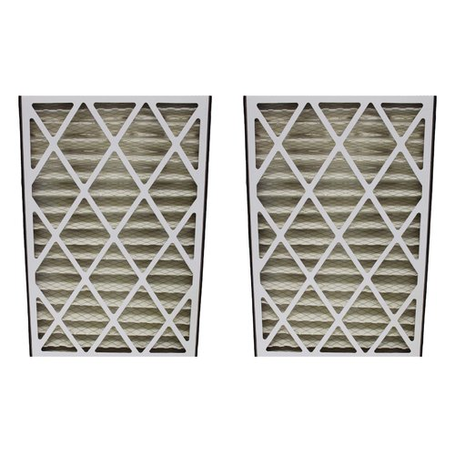 Crucial Trion Bear Air Filter (Set of 2)