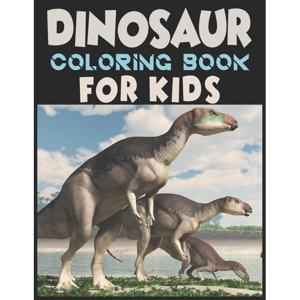 Dinosaur Coloring Book For Kids A Dinosaur Activity Book Adventure For Boys Girls Ages 2 4 4 8 25 Pages 8 5 X 11 Walmart Com Walmart Com