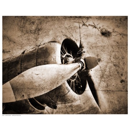 15 Poster Print - Antique Plane II Poster Print (15 x 12)