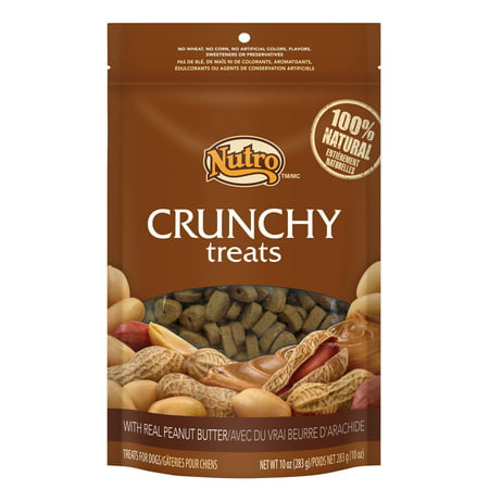 (12 Pack) NUTRO Crunchy Halloween Dog Treats with Real Peanut Butter, 10 oz. Bag (Homemade Halloween Treats For Dogs)