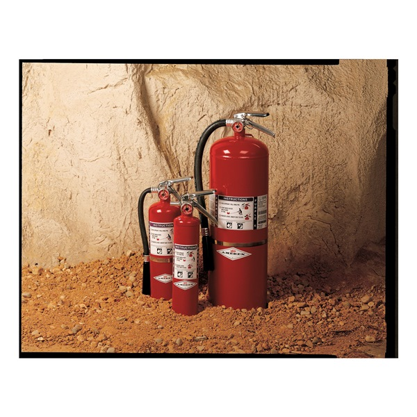Fire Extinguisher, Dry Chemical, BC, 30B:C