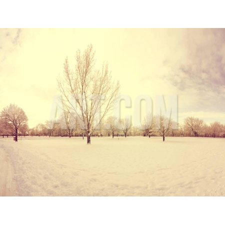 A Scenic Cold Winter Landscape with Snow and Trees Done with a Retro Vintage Instagram Filter Print Wall Art By