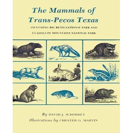 The Mammals Of Trans Pecos Texas  Including Big Ben National Park   Guadalupe Mountains National Park