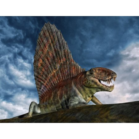 Dimetrodon Was An Extinct Genus Of Synapsid From Th Early Permian Period Canvas Art   Philip Brownlowstocktrek Images  17 X 13