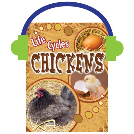 Life Cycle Of Chicken (Chickens)