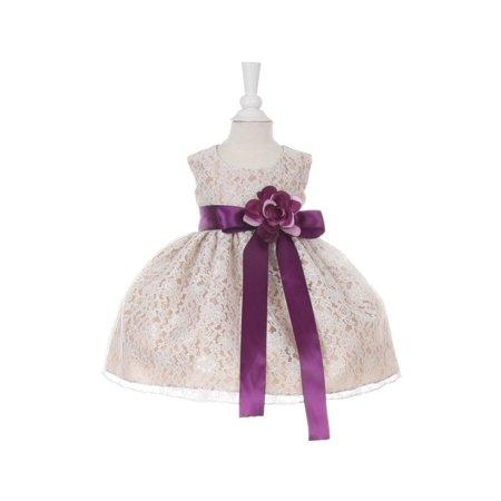 Baby Girls Champagne Lace Purple Sash Sleeveless Dress 12M