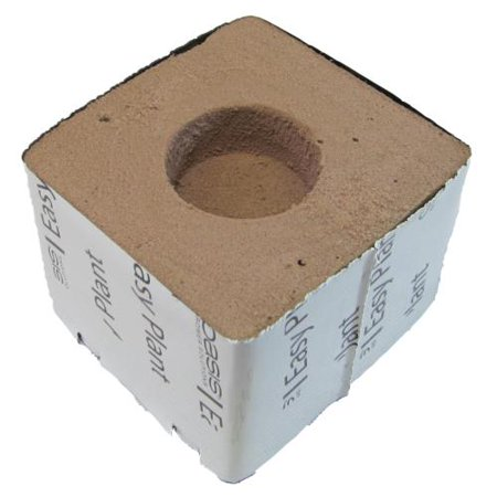 Oasis Easy Plant Block - 3 in x 3 in x 3 in - 1.75 in Hole Diameter - Oasis Colour Block