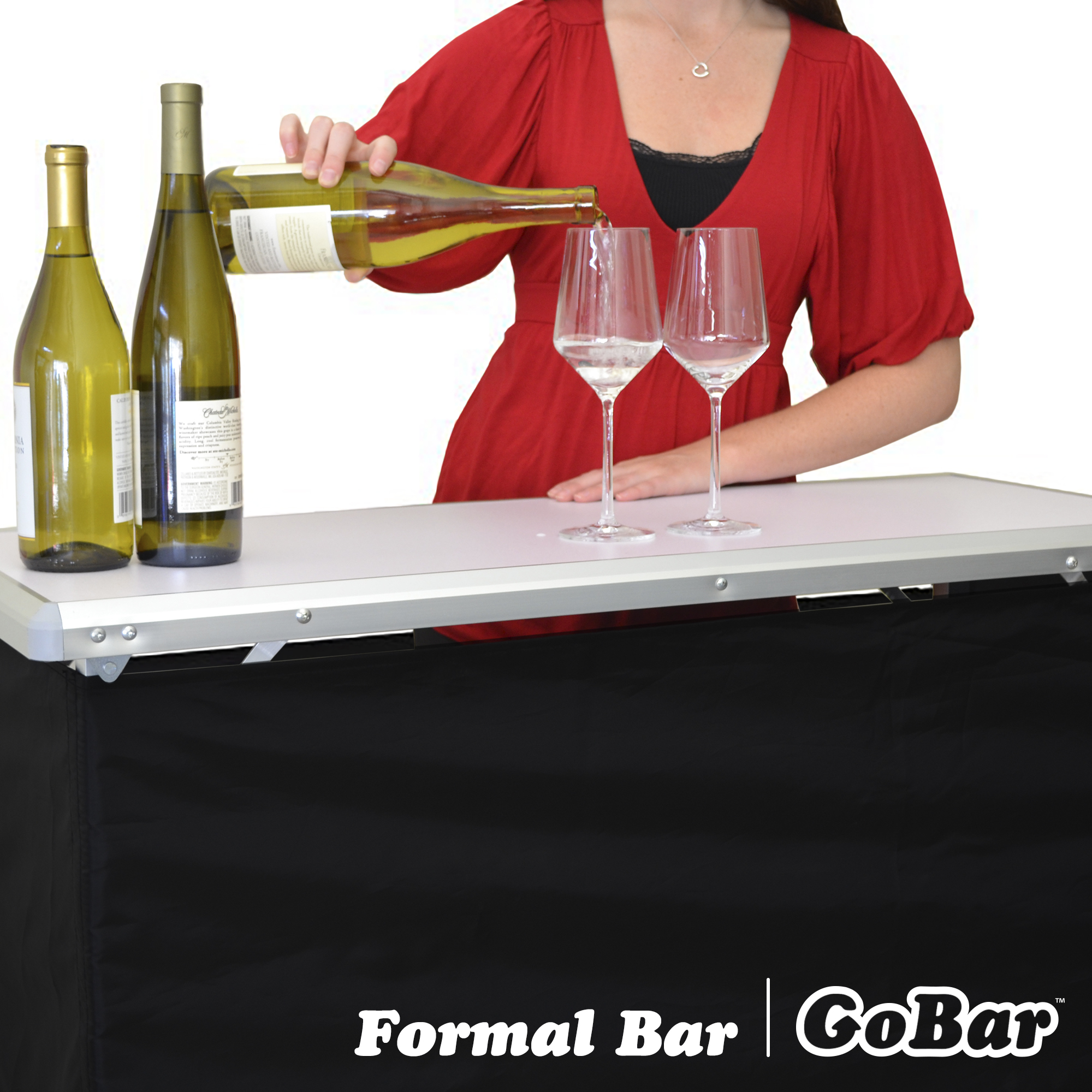 Portable Travel Pop Up Party Bar Fun Tail Gate 3 Front Themed Skirts Carry Case