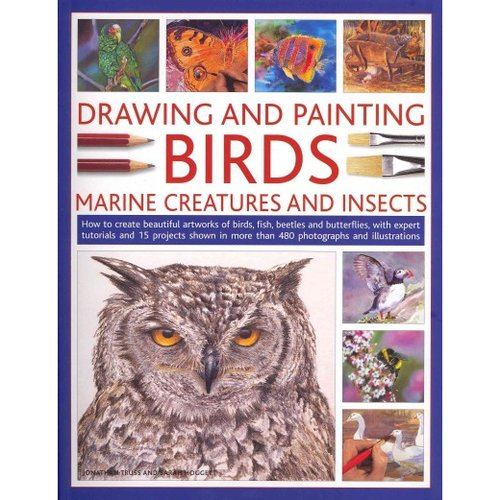 Drawing and Painting Birds, Marine Creatures and Insects: How to Create Beautiful Artworks of Birds, Fish, Beetles and Butterflies, With Expert Tutorials and 15 Projects Shown in More Than 480 Photographs and