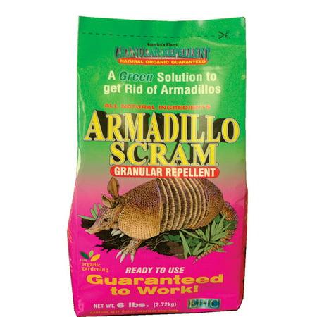 Armadillo Scram Organic Armadillo -