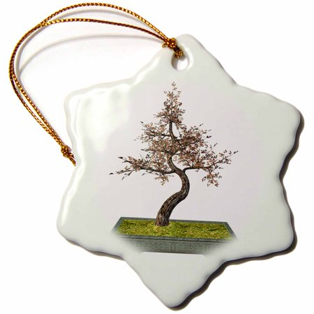 3dRose A cherry tree bonsai with pink leaves, Snowflake Ornament, Porcelain, 3-inch A cherry tree bonsai with pink leaves Ornament a perfect addition to your tree or as a window decoration.  This glossy porcelain ornament is a great gift for family and friends, commemorating each holiday or special occasion.  Image printed on both sides; measures 3 inches.  A strand of gold thread makes it easy to display this fantastic keepsake.