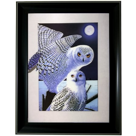 OWL SINGLE 3D LENTICULAR ART PICTURE FRAME WITH ZOOMING 3D EFFECT WALL DECOR - Owl Photo