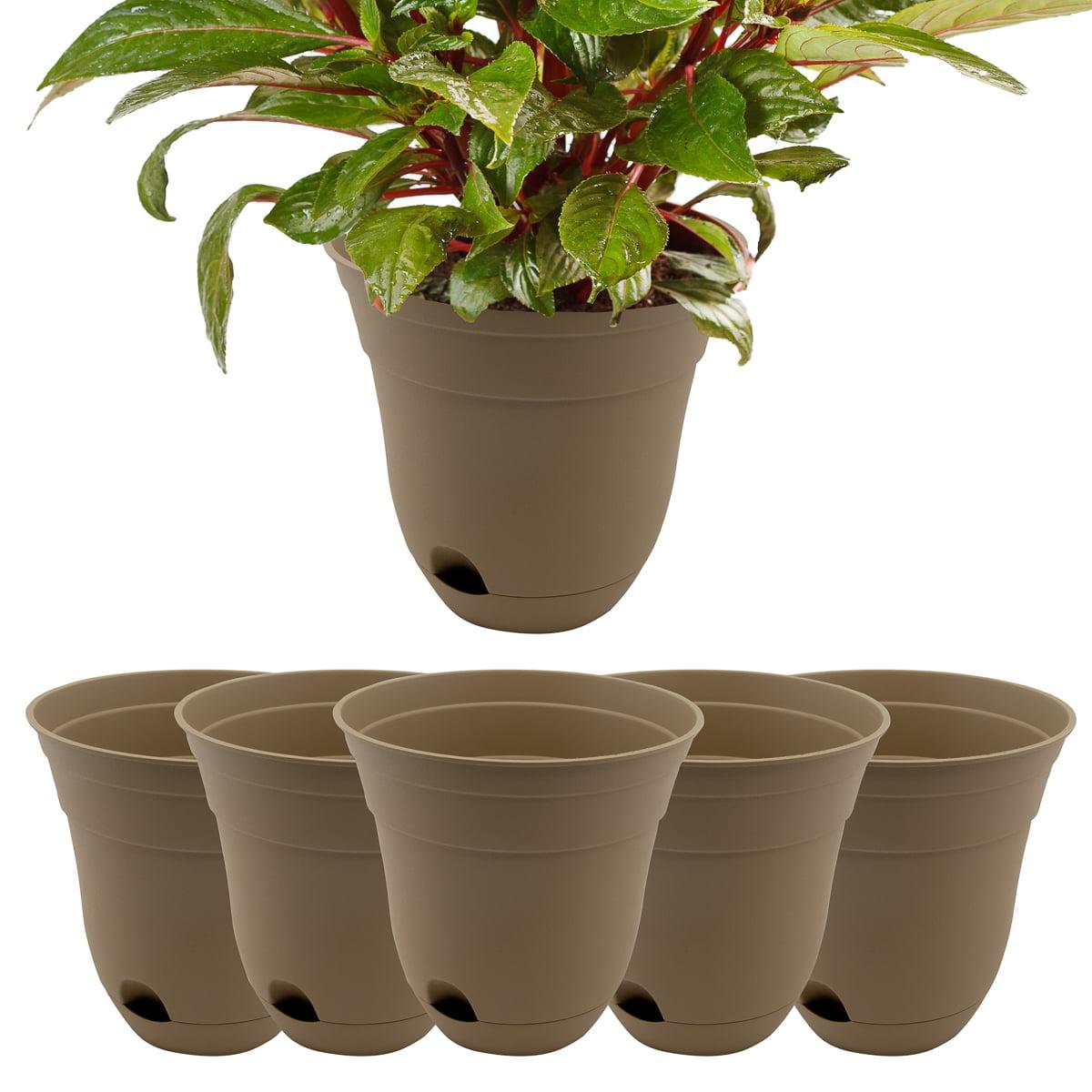 """Suncast (6 Pack) Self Watering Succulent 7"""" Planter for Indoor Plants Herb Garden Outdoor Plants Pots Set"""