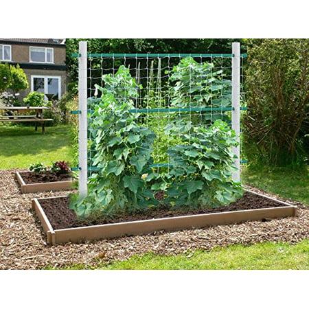 Easy Installation Stake Trellis, Cucumber Trellis, Squash Trellis, 4FT×5FT, 2 Pack (Cucumber Ideas)