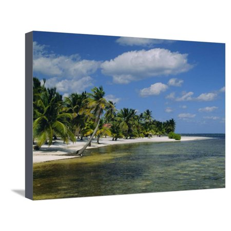 Main Dive Site in Belize, Ambergris Caye, Belize, Central America Stretched Canvas Print Wall Art By Gavin