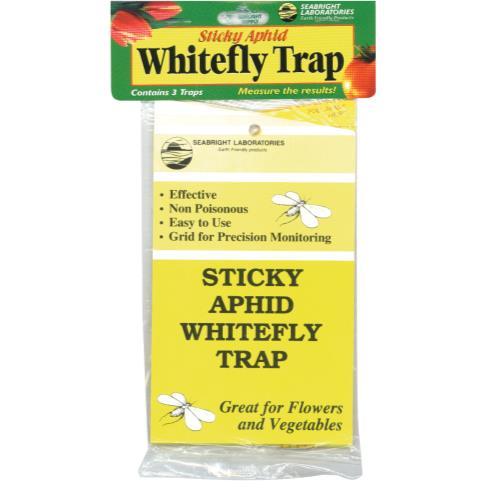 Sticky Whitefly Trap 3/Pack (1 = 24/Cs)