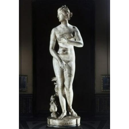 Medici Venus Greek Art Marble Galleria degli Uffizi Florence Italy Poster - Venus Greek