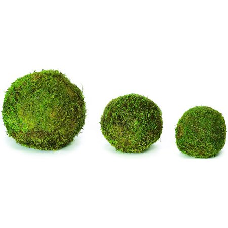 Decorative Dried Green Moss Balls - 2,6,8 inch diameter -- Single package of 6 - 2