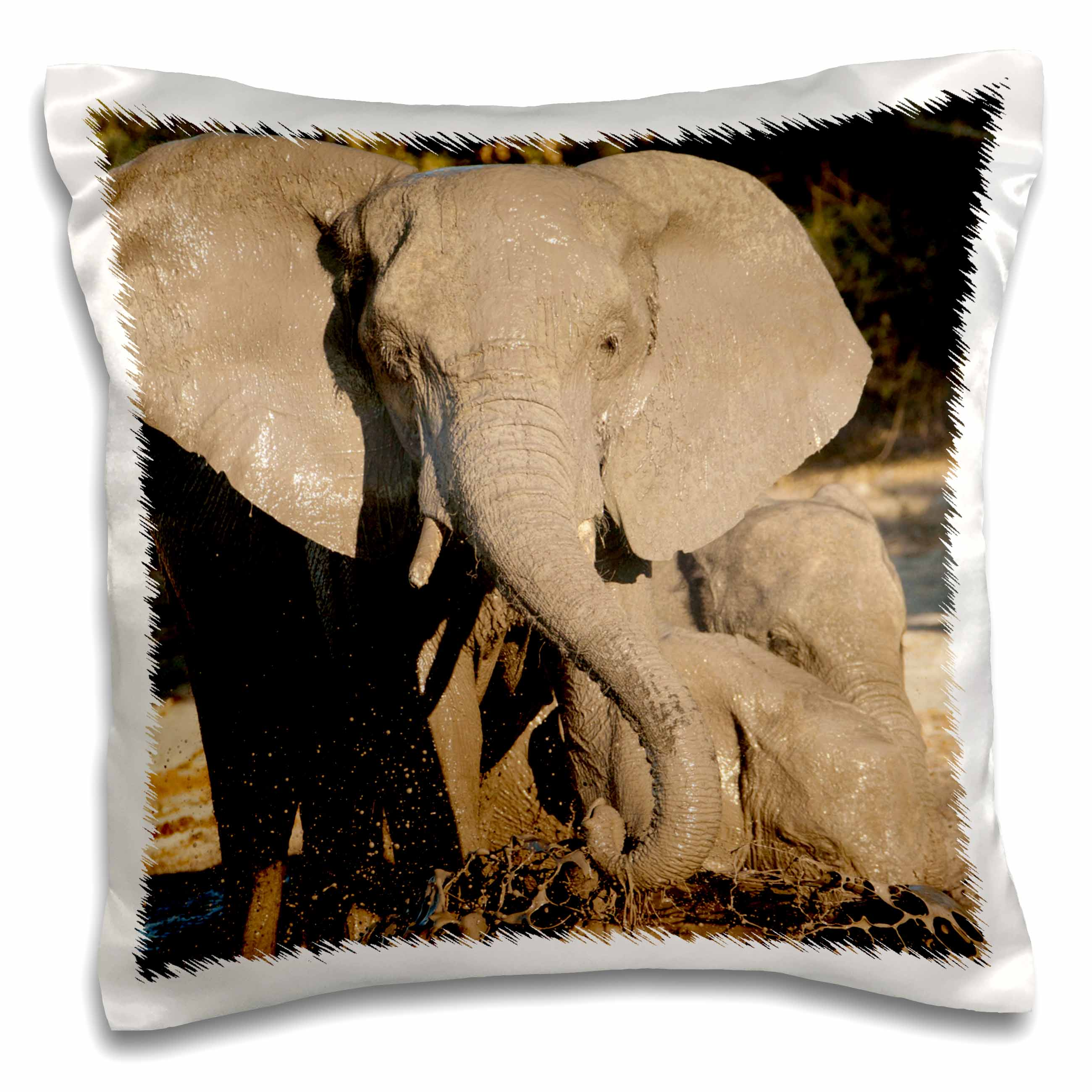 3dRose Botswana, Chobe Park, African Elephant - AF05 JMC0000 - Joe and Mary Ann McDonald, Pillow Case, 16 by 16-inch