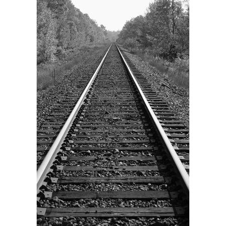 Train Tracks PosterPrint - Funny Halloween Pics And Quotes