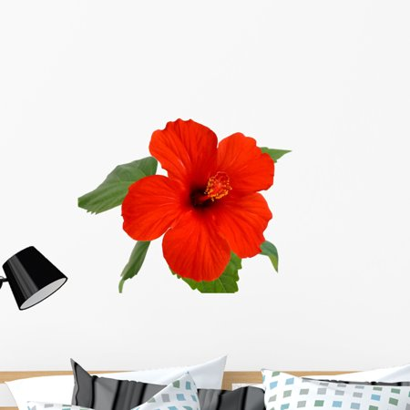 Hibiscus Flower Wall Decal By Wallmonkeys Peel And Stick Graphic 36