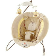 Fisher-Price My Little Snugabear Deluxe Bouncer