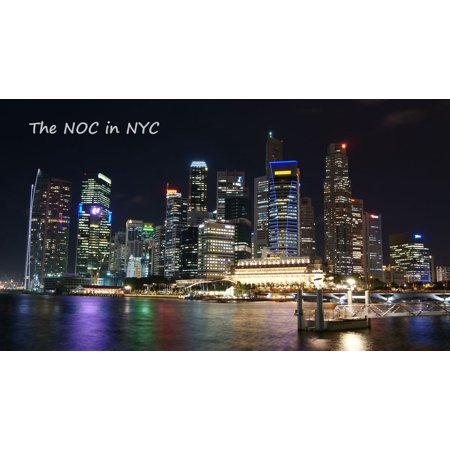 The NOC in NYC - eBook