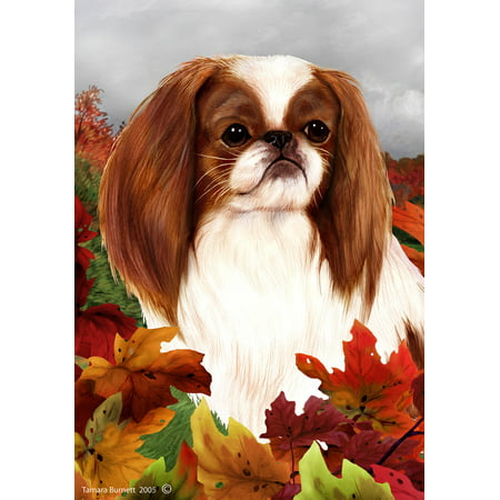 Japanese Chin Red/White - Best of Breed Fall Leaves Garden