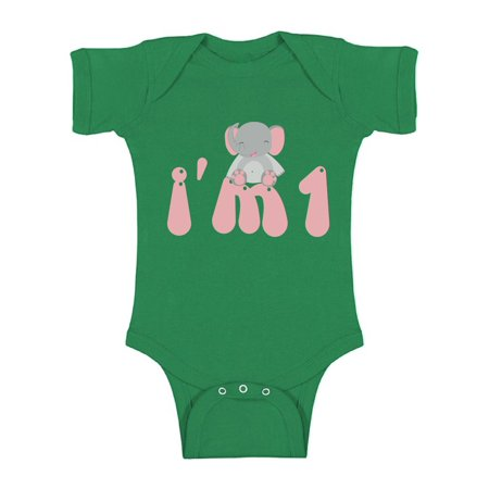 Awkward Styles 1st Birthday Girl Clothes Elephant Birthday Baby Romper Elephant Gifts for 1 Year Old Birthday Baby Bodysuit 1 Year Old Shirt My 1st Birthday Gifts for Birthday Girl Birthday