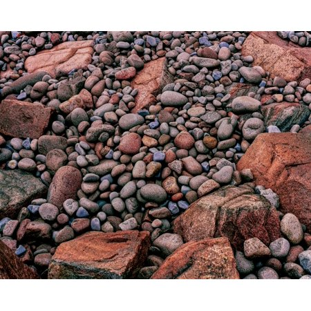 Elevated view of stones on the coast Park Loop Road Acadia National Park Maine USA Poster Print by Panoramic