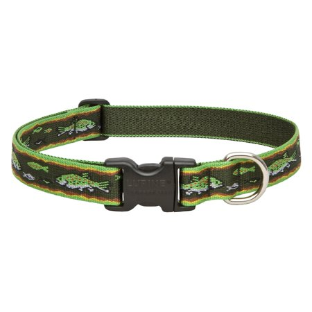 Lupine Collars; Leads Adjustable Trout Dog Collar